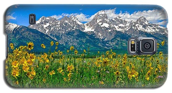 Teton Peaks And Flowers Galaxy S5 Case