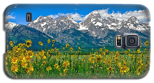 Teton Peaks And Flowers Galaxy S5 Case