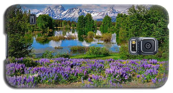 Teton Spring Lupines Galaxy S5 Case by Greg Norrell