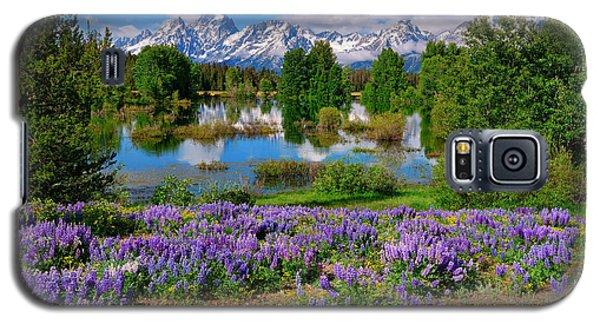 Teton Spring Lupines Galaxy S5 Case