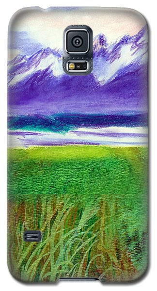 Teton View Galaxy S5 Case