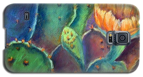 Texas Beauty  Pastel Galaxy S5 Case by Antonia Citrino