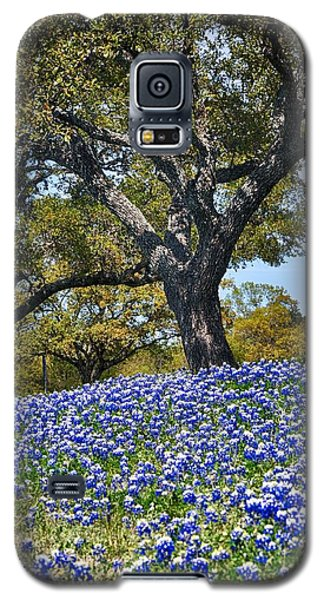 Texas Bluebonnet Hill Galaxy S5 Case