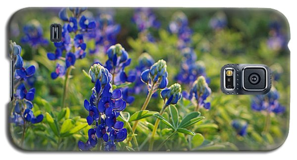 Texas Bluebonnets In Early Sun Galaxy S5 Case by Lisa  Spencer