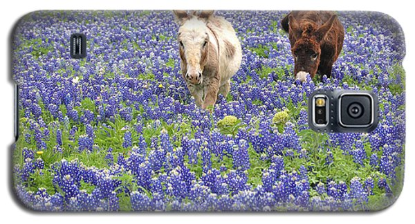 Galaxy S5 Case featuring the photograph Texas Donkeys And Bluebonnets - Texas Wildflowers Landscape by Jon Holiday