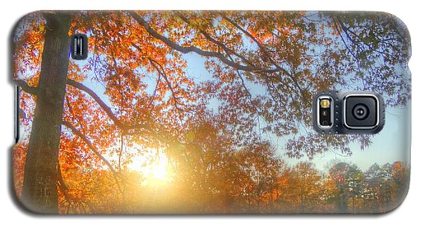 Texas Fall Colors 002 Galaxy S5 Case
