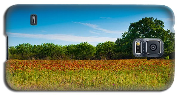 Texas Hill Country Meadow Galaxy S5 Case