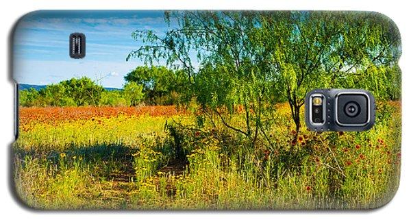 Texas Hill Country Wildflowers Galaxy S5 Case by Darryl Dalton