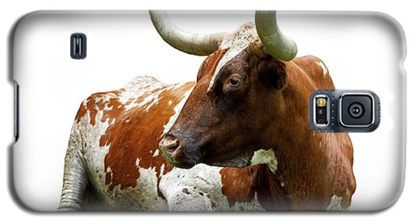 Texas Longhorn Bull Galaxy S5 Case by Charles Beeler