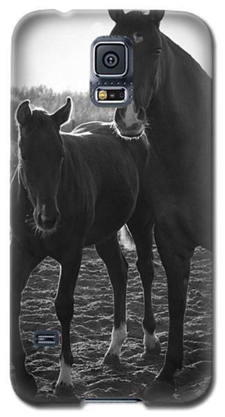 Texas Mare Galaxy S5 Case