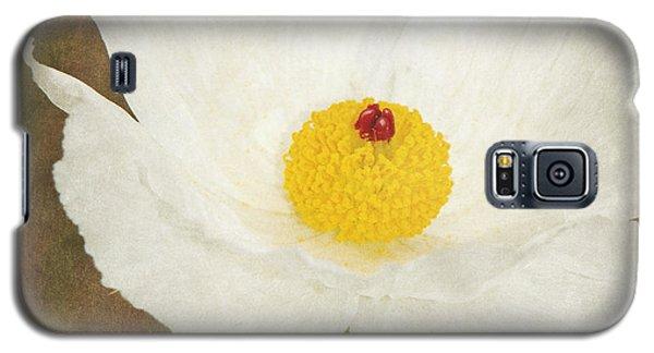 Texas Prickly Poppy Wildflower Galaxy S5 Case