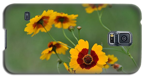 Texas Wildflower Galaxy S5 Case