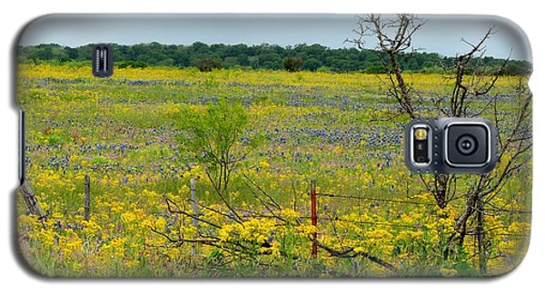 Texas Wildflowers And Mesquite Tree Galaxy S5 Case