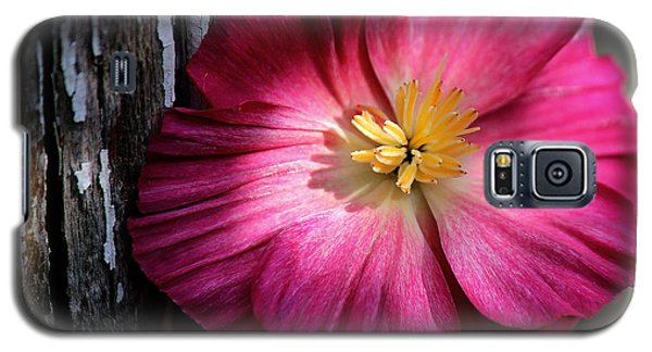 Texture Galaxy S5 Case by Silke Brubaker