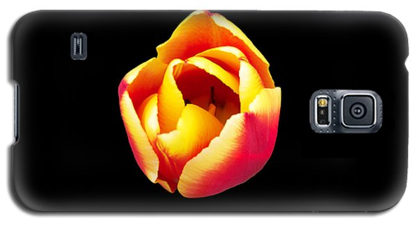 Galaxy S5 Case featuring the photograph Textured Yellow And Pink Tulip by Gena Weiser