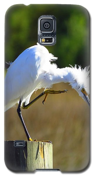 Galaxy S5 Case featuring the photograph Thats The Spot by Phyllis Beiser