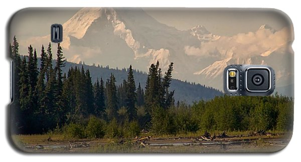 Galaxy S5 Case featuring the photograph The Alaska Range At Mount Hayes by Michael Rogers