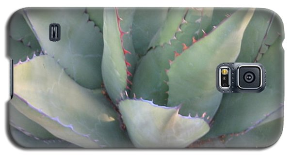 Galaxy S5 Case featuring the photograph The Arizona Desert by Jean Marie Maggi