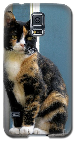 The Art Of Watching Galaxy S5 Case