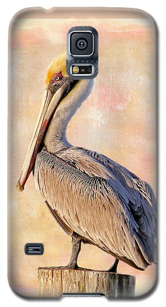 Birds - The Artful Pelican Galaxy S5 Case