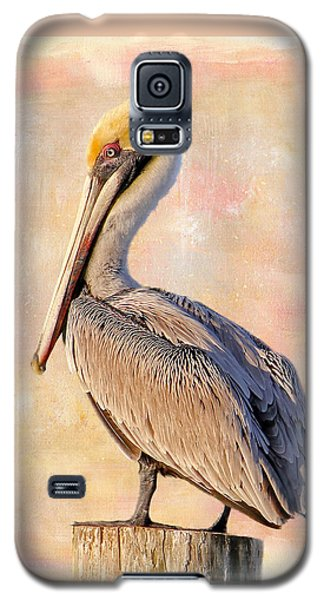 Birds - The Artful Pelican Galaxy S5 Case by HH Photography of Florida