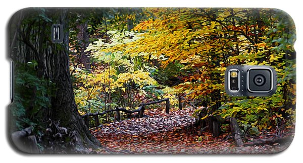Galaxy S5 Case featuring the photograph The Autumn Path by Yue Wang