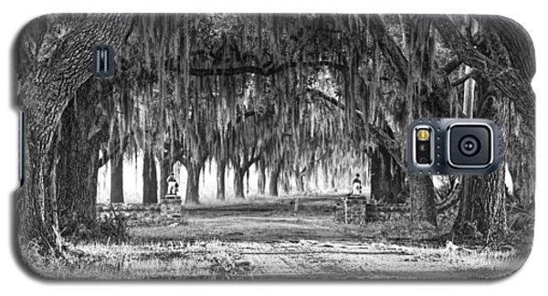 The Avenue Of Oaks Galaxy S5 Case by Scott Hansen