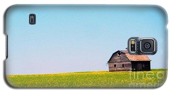 the Barn Galaxy S5 Case