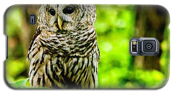 The Barred Owl Galaxy S5 Case