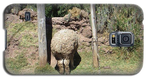 The Bashful Llama Galaxy S5 Case