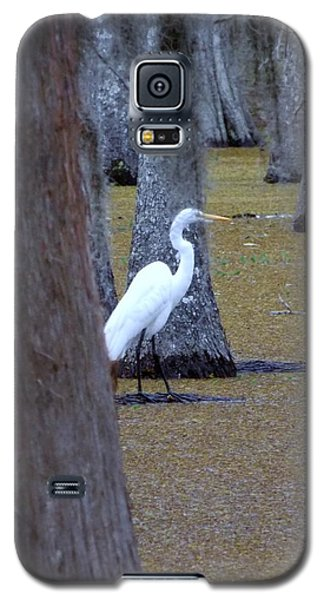 Galaxy S5 Case featuring the photograph The Bayou's White Knight by John Glass
