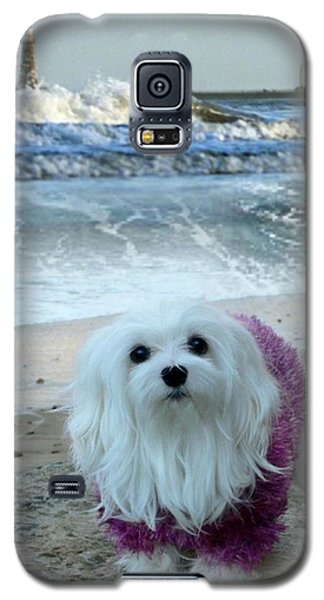 Galaxy S5 Case featuring the mixed media The Beach In Winter by Morag Bates
