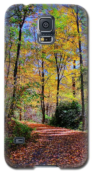 The Beauty Of Fall Galaxy S5 Case
