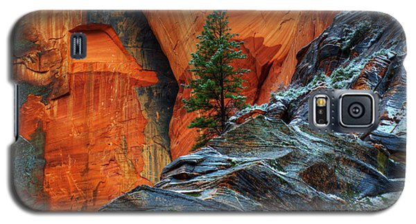 The Beauty Of Sandstone Zion Galaxy S5 Case