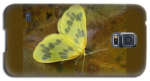 The Beggar Moth Galaxy S5 Case