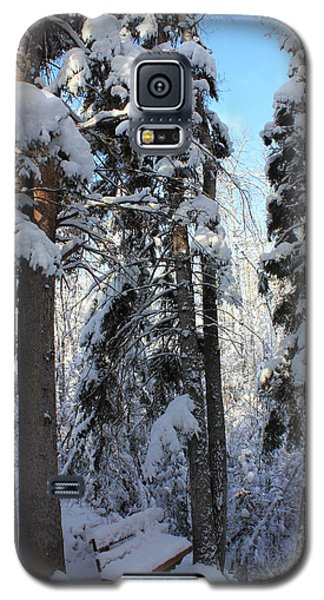 The Bench In Winter Galaxy S5 Case by Jim Sauchyn