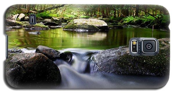 The Big Flatbrook Galaxy S5 Case
