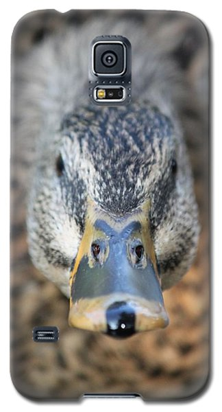 Galaxy S5 Case featuring the photograph The Bill by Amy Gallagher
