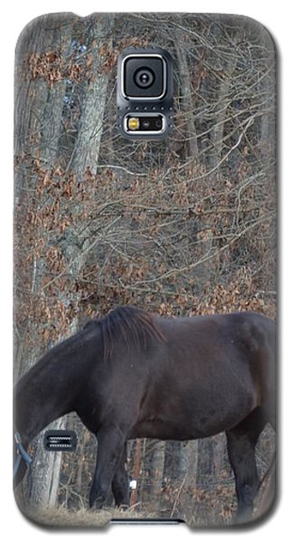 Galaxy S5 Case featuring the photograph The Black by Maria Urso