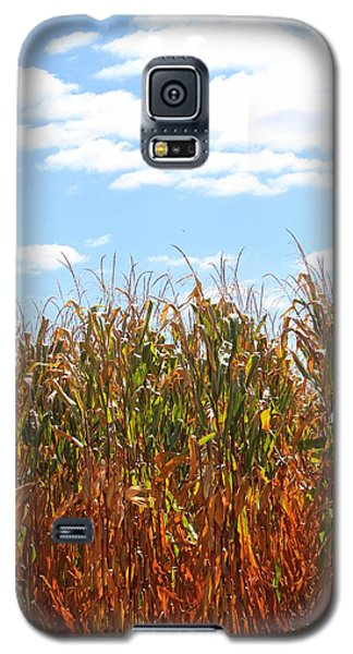 Galaxy S5 Case featuring the photograph The Bloody Cornfield by Debra Kaye McKrill