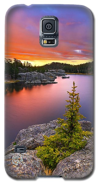 Galaxy S5 Case featuring the photograph The Bonsai by Kadek Susanto