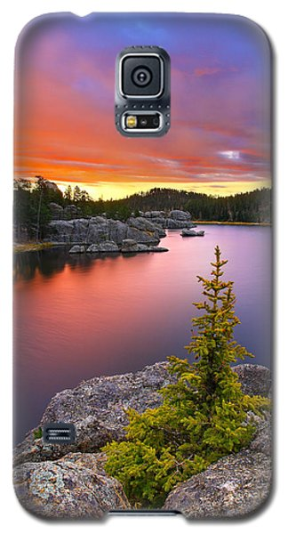 Landscapes Galaxy S5 Case - The Bonsai by Kadek Susanto