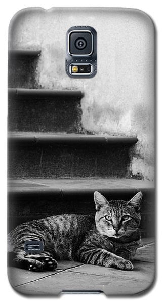 The Boss Galaxy S5 Case by Laura Melis
