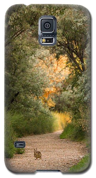 The Bunny Trail Galaxy S5 Case
