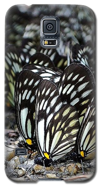 The Butterfly Gathering 2 Galaxy S5 Case