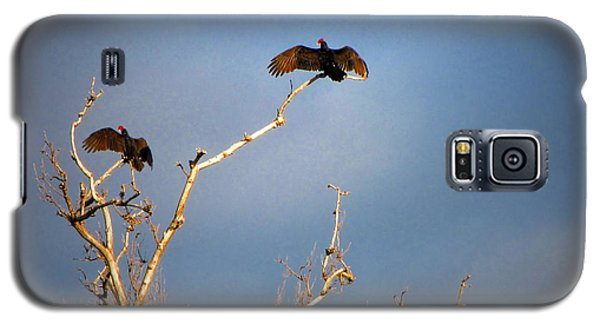 The Buzzard Roost Galaxy S5 Case