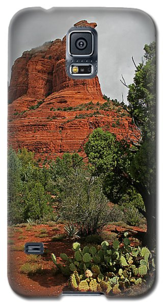 The Call Of The Rocks Galaxy S5 Case