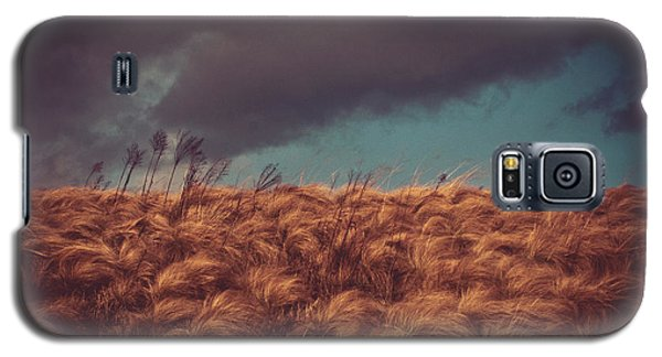 The Calm In The Storm Galaxy S5 Case by Jessica Brawley