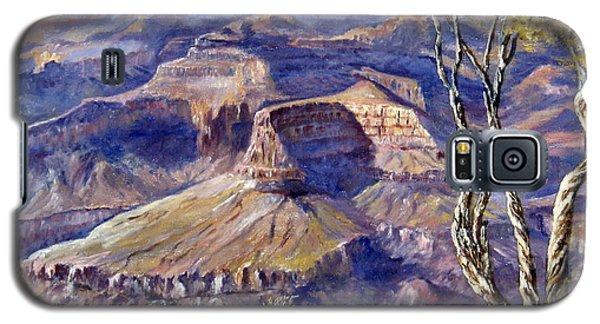 The Canyon Galaxy S5 Case