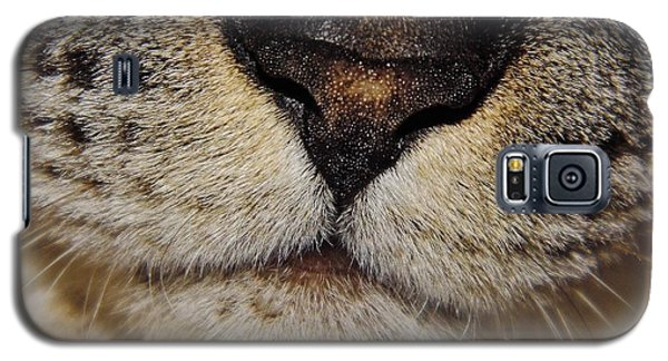 The - Cat - Nose Galaxy S5 Case by D Hackett